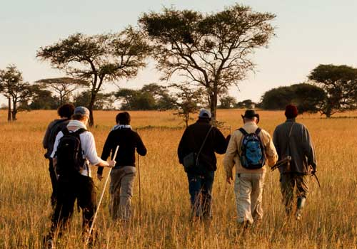 5 days tanzania walking safari