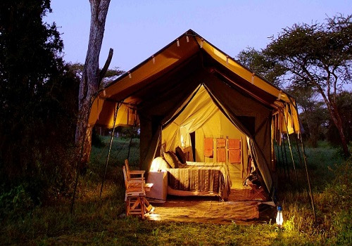7 Days Tented Camping Safari